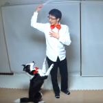 今月のドッグダンスVol 15   YouTube